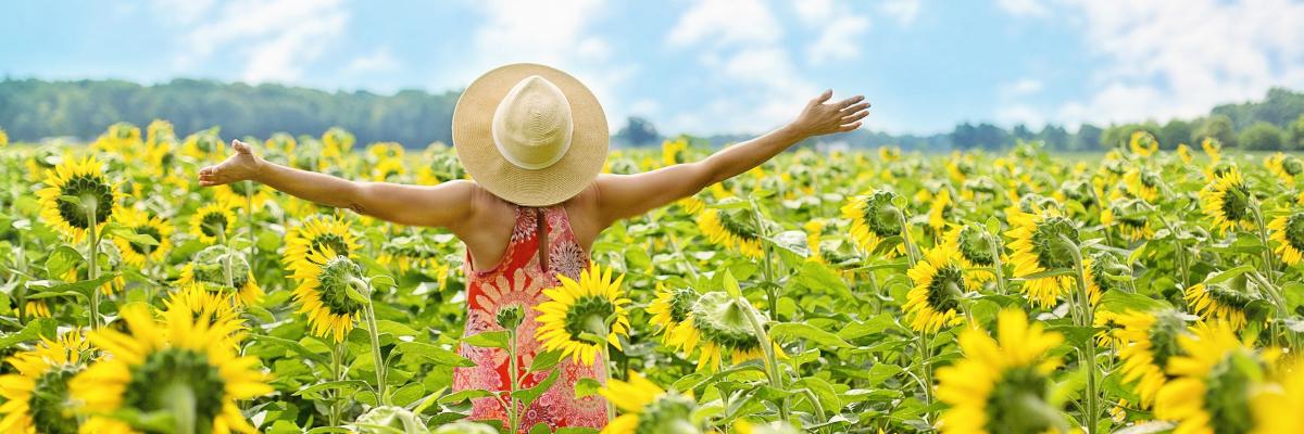 Frau hebt Arme in einem Feld von Sonnenblumen – FAQ zur Gesundheit – Coaching, FAQ, Nutri-Plus