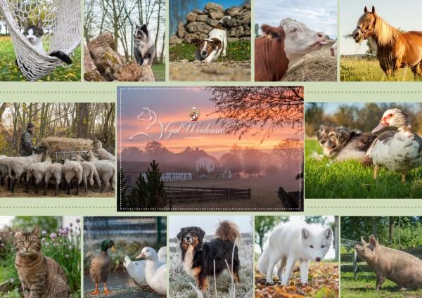 Lebenshof-Gut-Weidensee-e-V-Collage-2048x1448