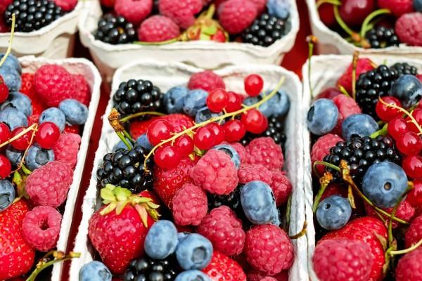 Polyphenole_2_Beitragsbild_berries-1546125_1920