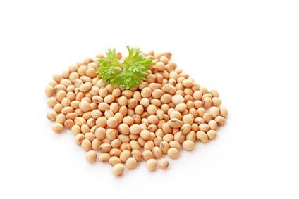 Sojabohnen – Basiswissen Mikronährstoffe