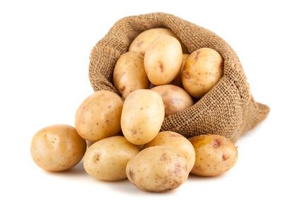 Kartoffeln – Basiswissen Mikronährstoffe