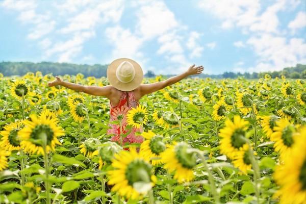 Produkte_B12-Lutschtabletten_Beitragsbild_sunflowers-3640938_1920