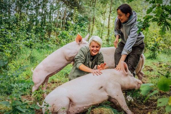 9-schweine-pauline-anni-menschen-yasi-monne-1-1200x800
